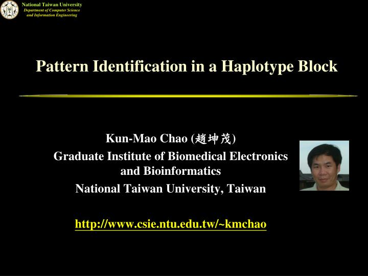 Pattern Identification in a Haplotype Block