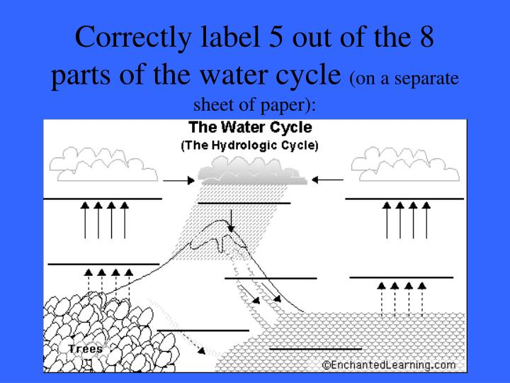 Correctly label 5 out of the 8 parts of the water cycle