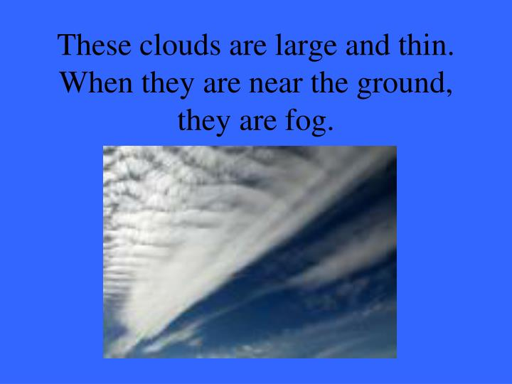 These clouds are large and thin. When they are near the ground, they are fog.