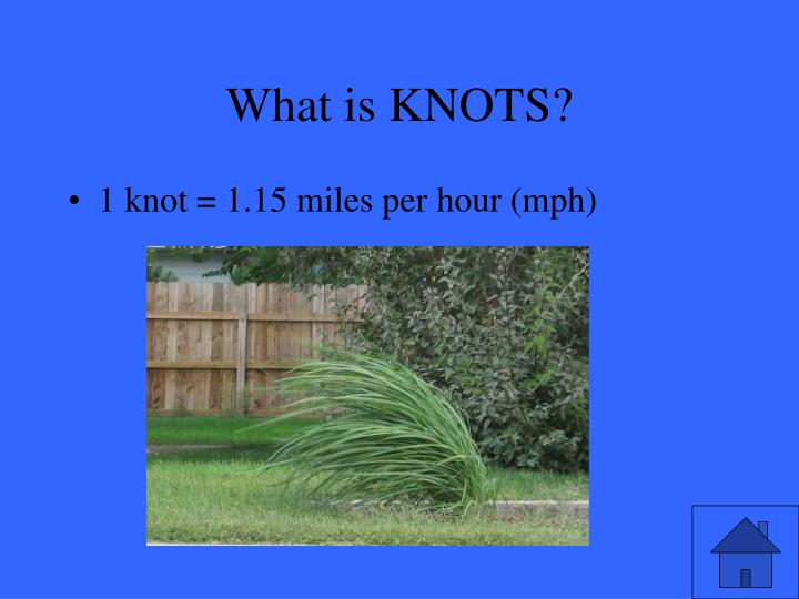 What is KNOTS?