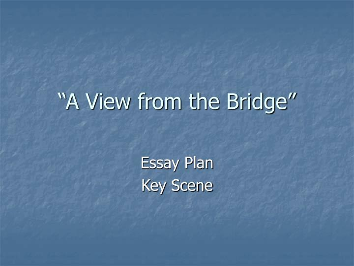 a view from the bridge 8 essay Celebrity bridges many bridges are icons for the cities or regions in which they are located almost everyone associates the golden gate bridge, for instance, with san francisco, or the brooklyn bridge with new york city.