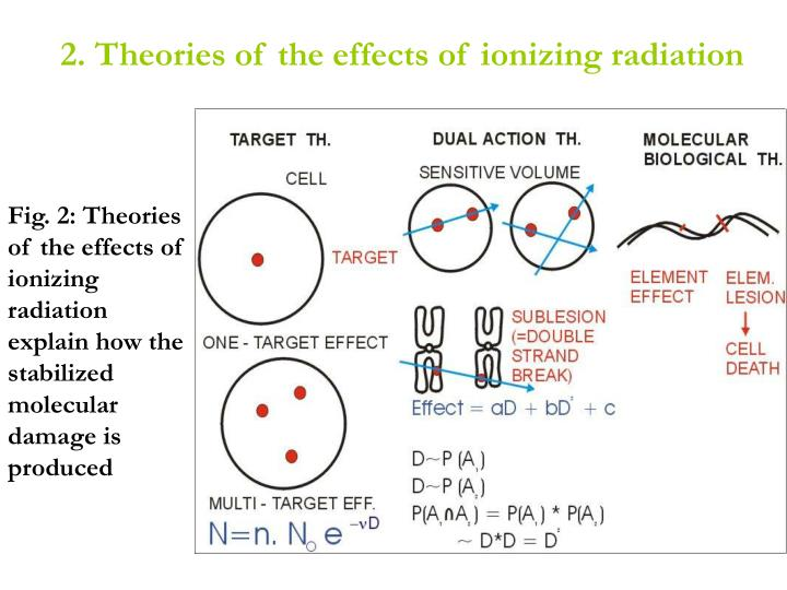 2. Theories of the effects of ionizing radiation