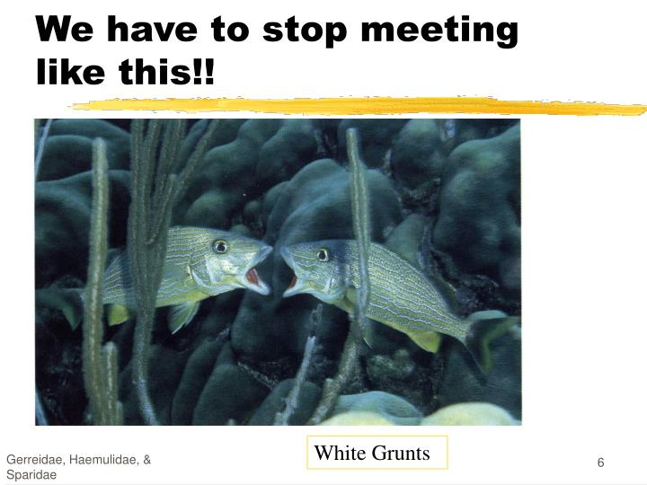 We have to stop meeting like this!!