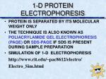 1 d protein electrophoresis