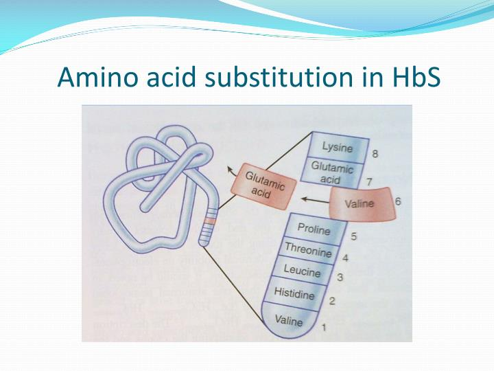 Amino acid substitution in hbs