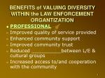 benefits of valuing diversity within the law enforcement organtization