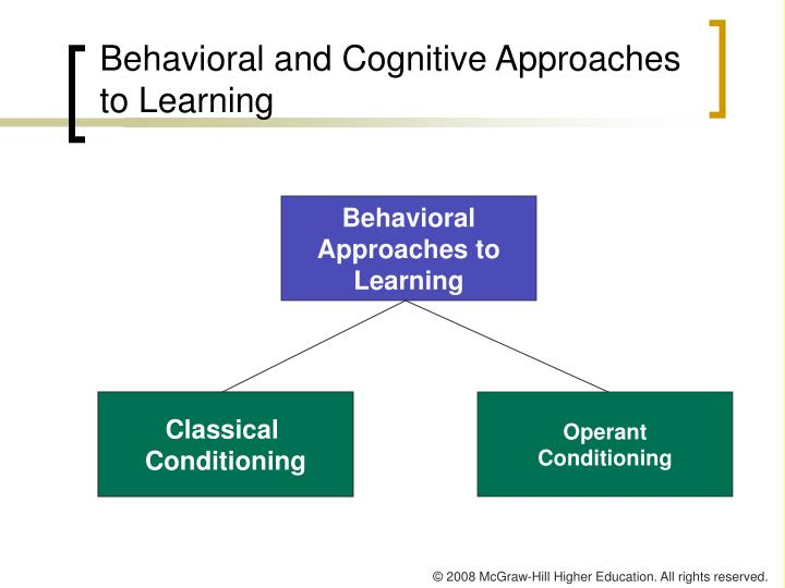 Behavioral and Cognitive Approaches to Learning