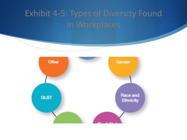 Exhibit 4-5: Types of Diversity Found