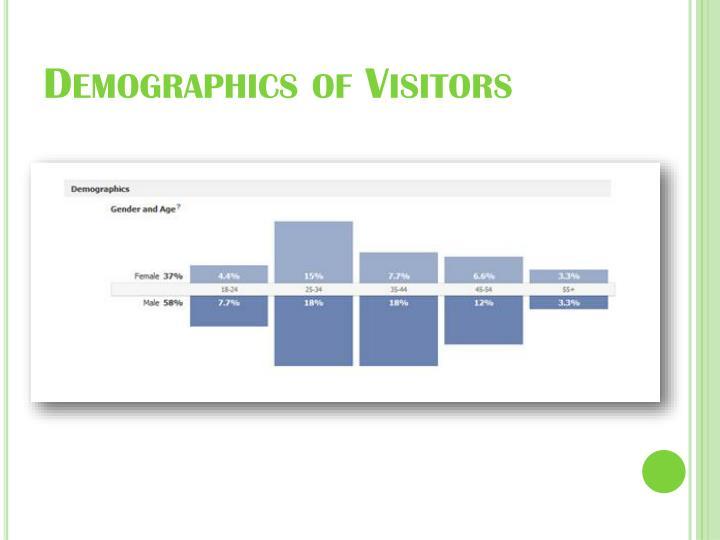 Demographics of Visitors