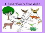 1 food chain or food web