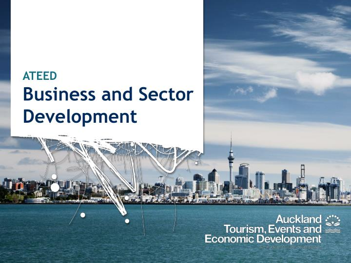 Ateed business and sector development