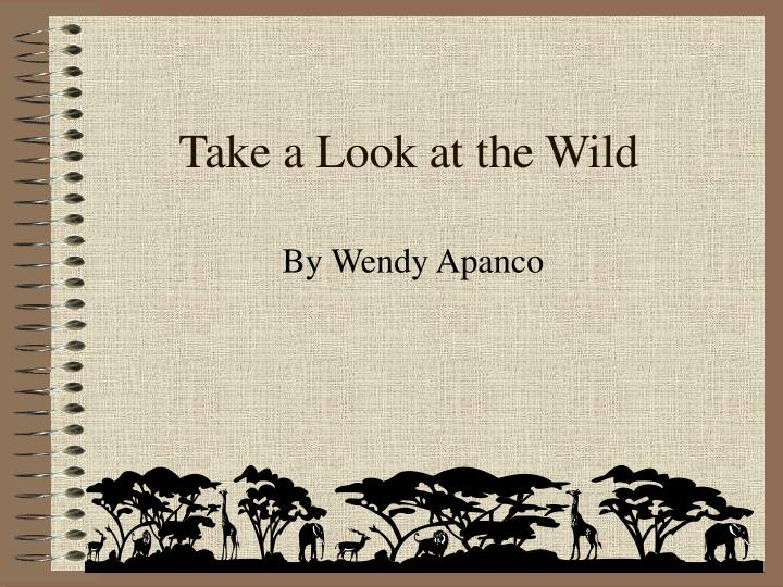 take a look at the wild n.