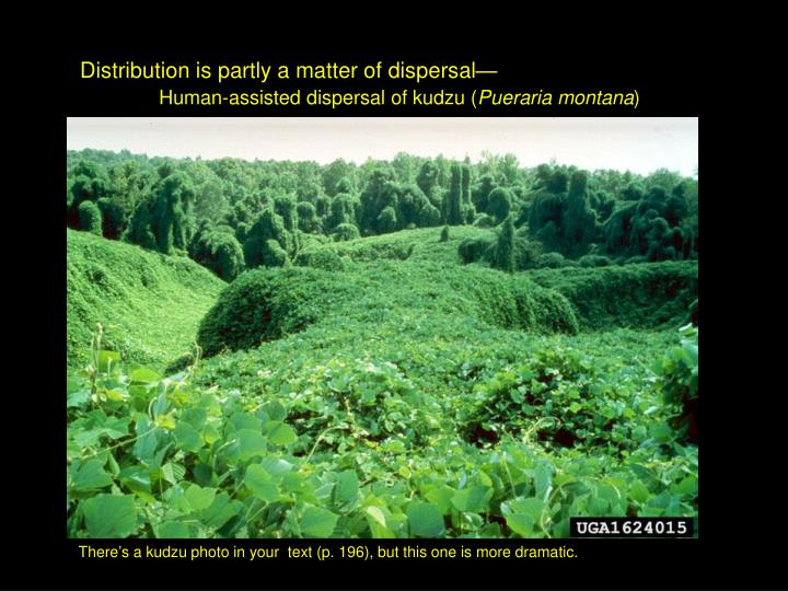 Distribution is partly a matter of dispersal—