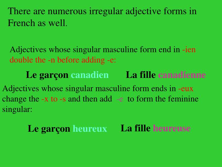 There are numerous irregular adjective forms in French as well