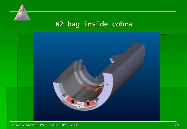 N2 bag inside cobra