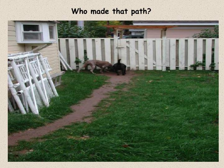 Who made that path?