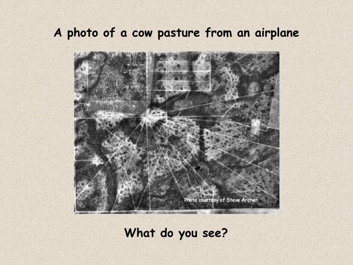 A photo of a cow pasture from an airplane