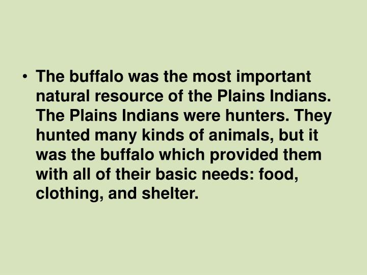 The buffalo was the most important natural resource of the Plains Indians. The Plains Indians were hunters. They hunted many kinds of animals, but it was the buffalo which provided them with all of their basic needs: food, clothing, and shelter.