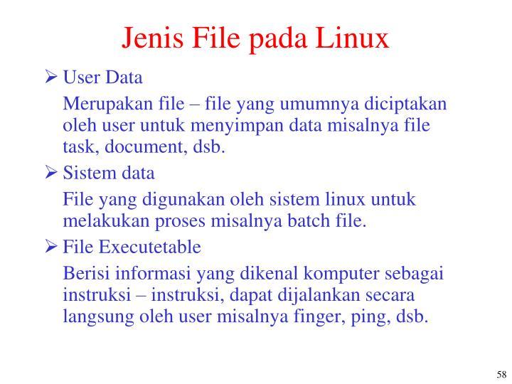 Jenis File pada Linux