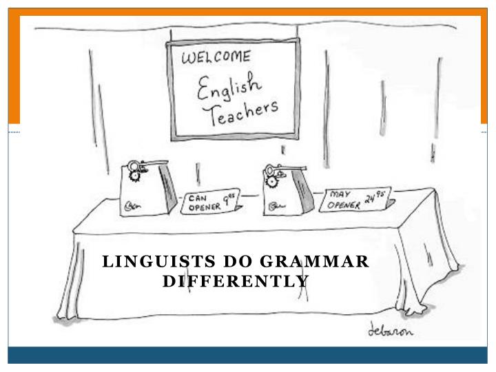 Linguists do grammar differently