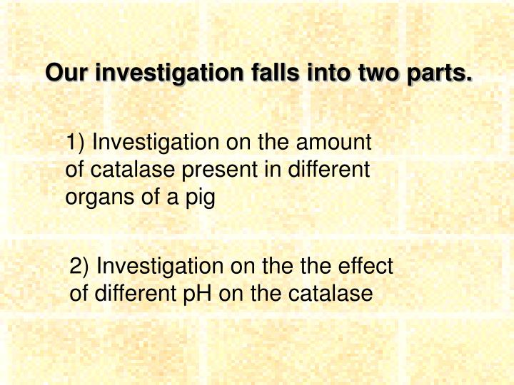 Our investigation falls into two parts.
