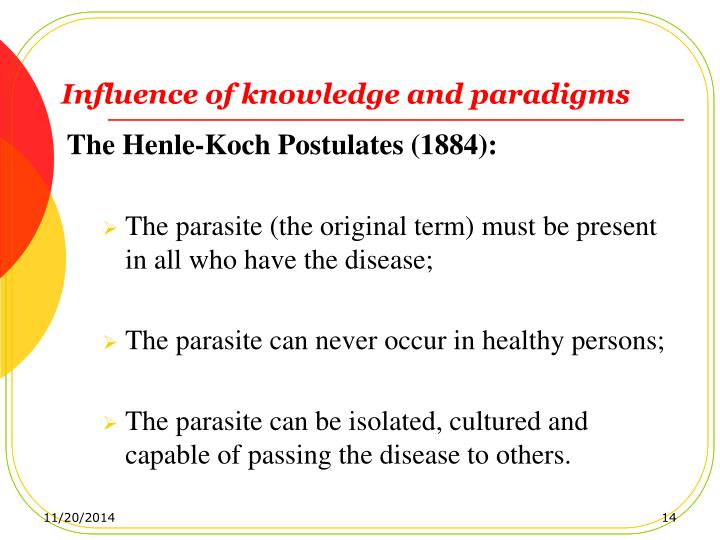 Influence of knowledge and paradigms