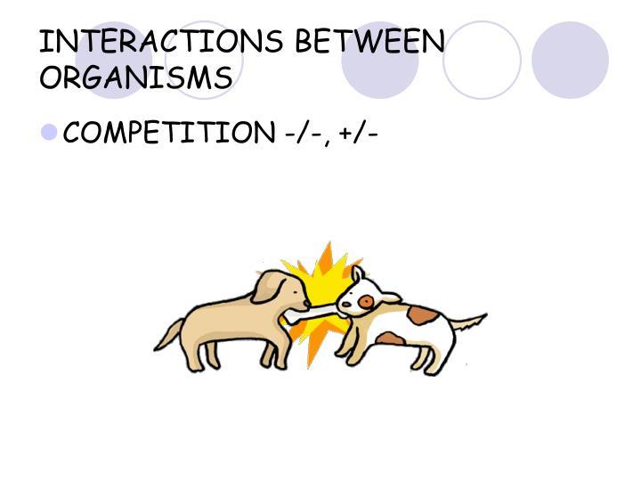 INTERACTIONS BETWEEN ORGANISMS
