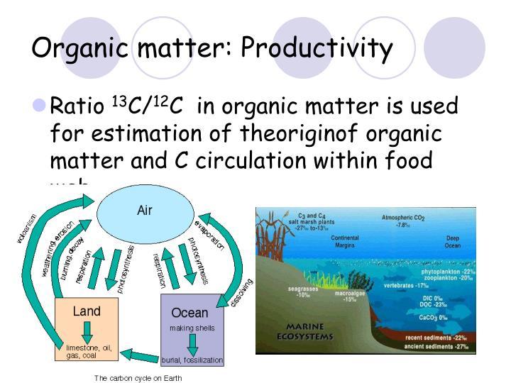 Organic matter: Productivity