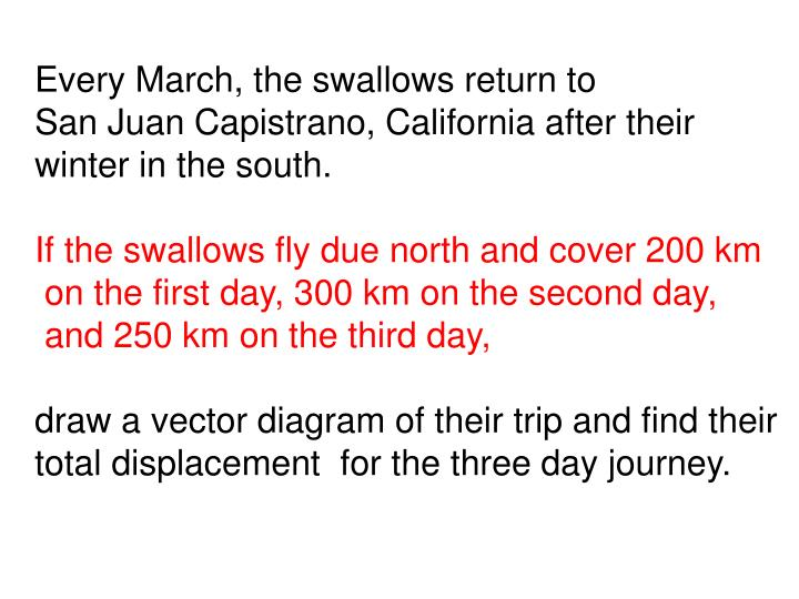 Every March, the swallows return to