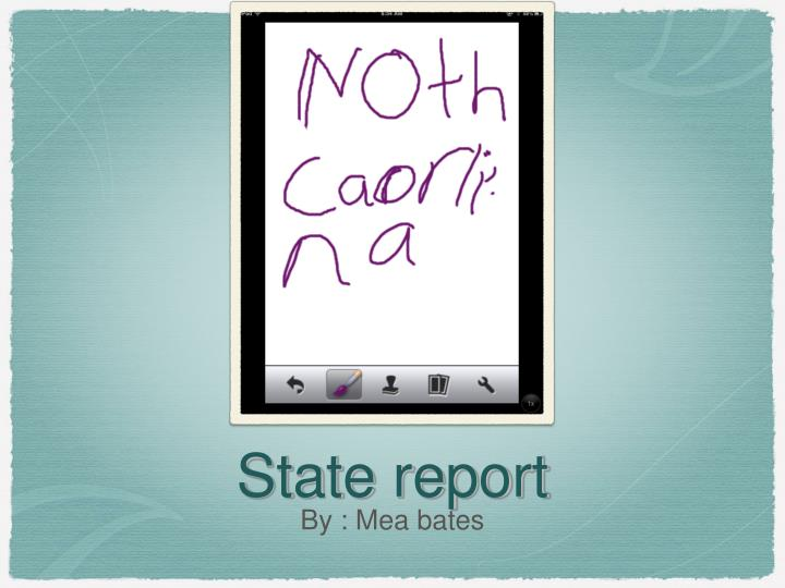 State report