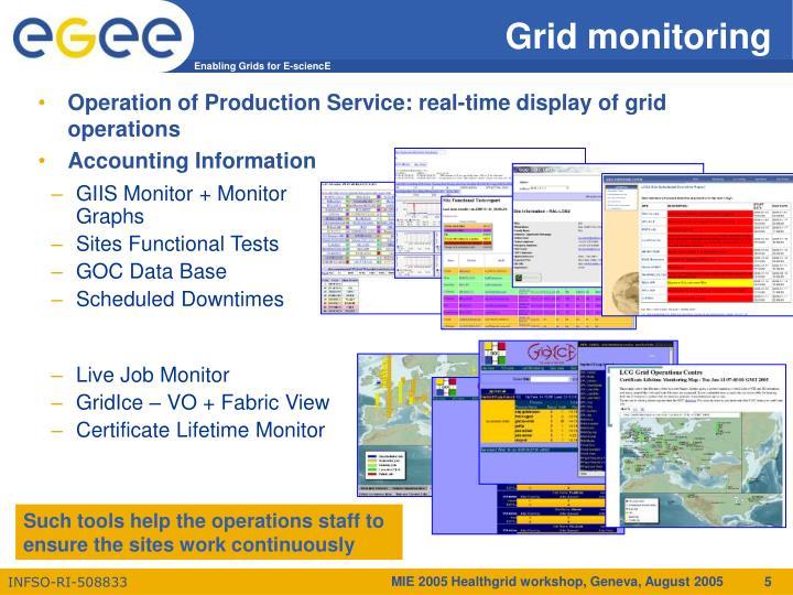 GIIS Monitor + Monitor Graphs