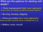 what are the options for dealing with waste