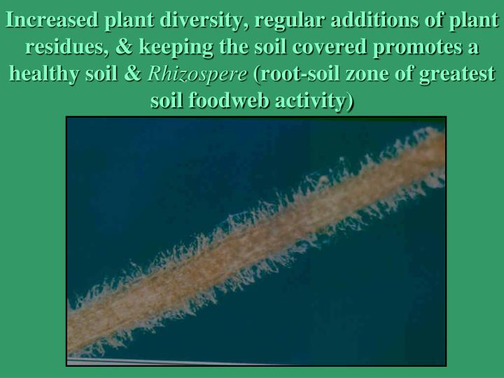 Increased plant diversity, regular additions of plant residues, & keeping the soil covered promotes a healthy soil &