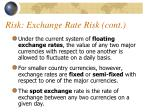 risk exchange rate risk cont