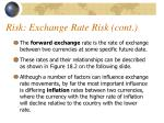 risk exchange rate risk cont1