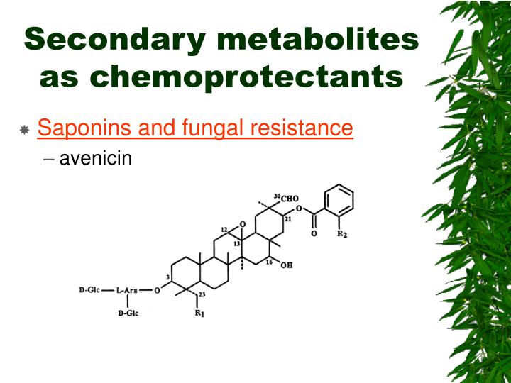 Secondary metabolites as chemoprotectants