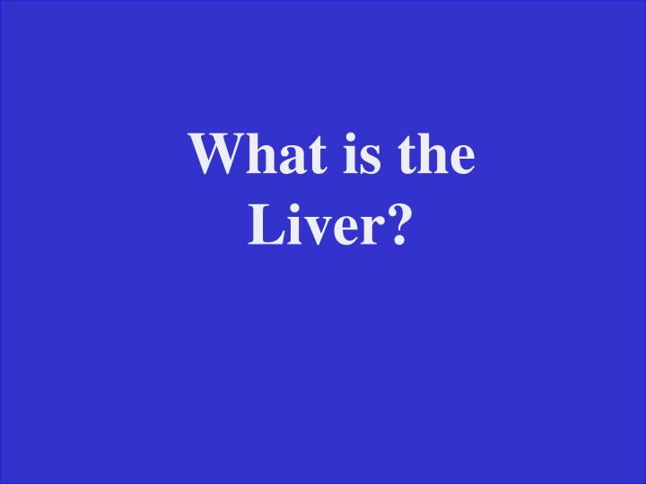 What is the Liver?
