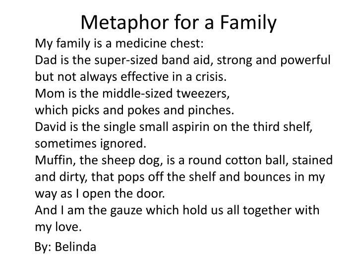 Metaphor for a Family