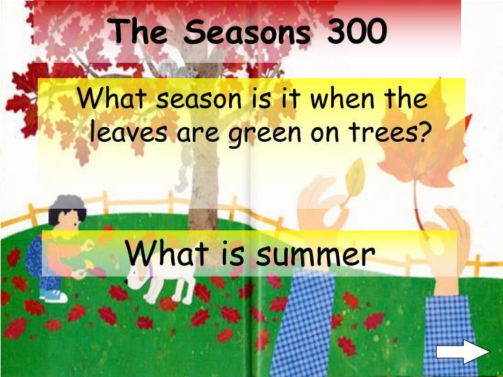 The Seasons 300