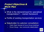 project objectives work plan