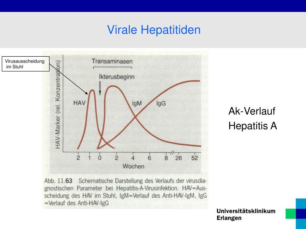 PPT - Lebererkrankungen PowerPoint Presentation, free ...