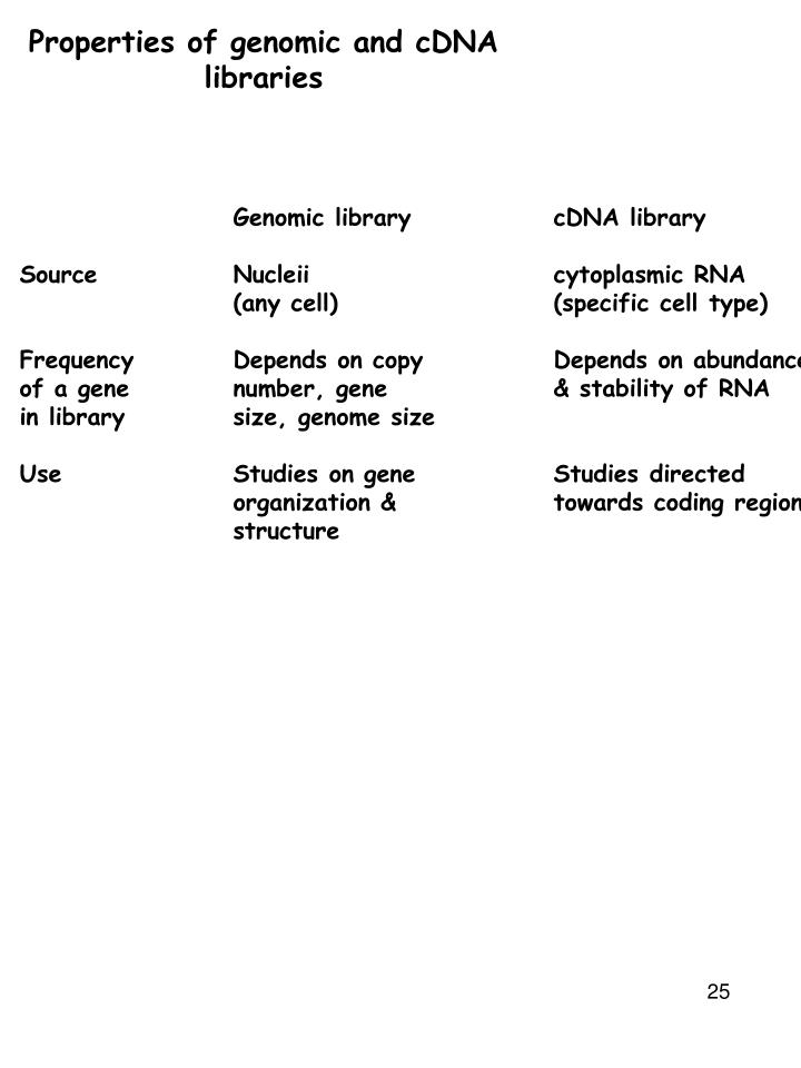 genomic library vs cdna library