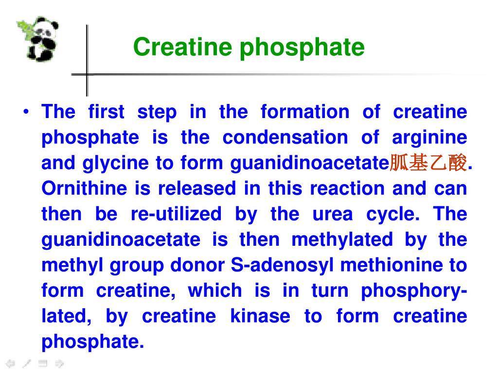 Methylol Urea Synthesis