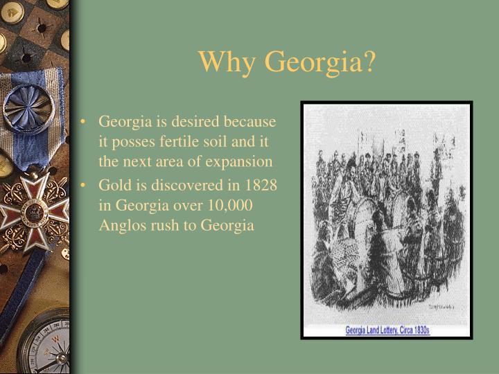 Why Georgia?