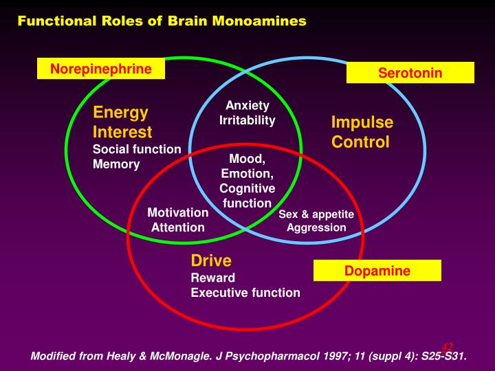 Functional Roles of Brain Monoamines