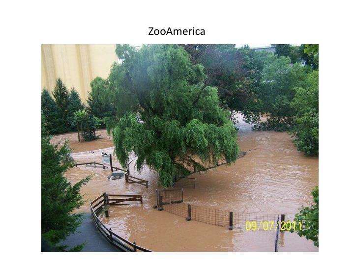 ZooAmerica