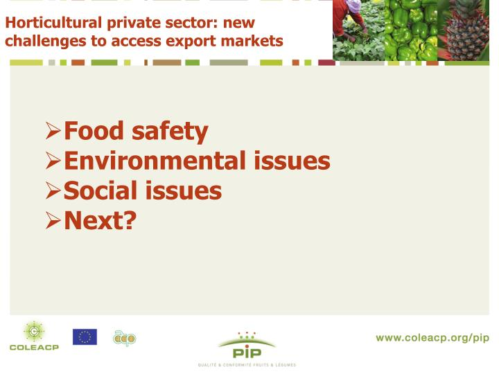 Horticultural private sector: new challenges to access export markets