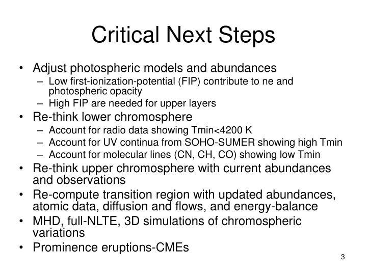 Critical next steps