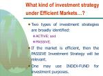 what kind of investment strategy under efficient markets
