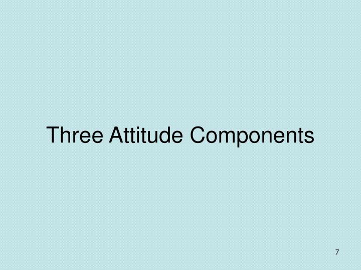 Three Attitude Components